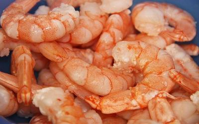 Best Seafood Markets in Destin, Florida