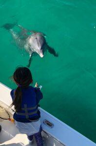 Destin Florida Dolphin Tours