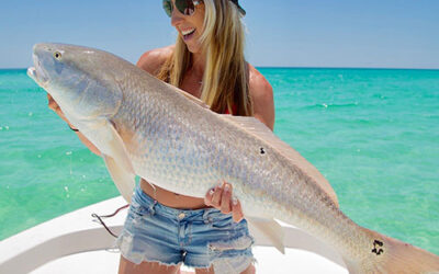Destin Florida Inshore Fishing Charters